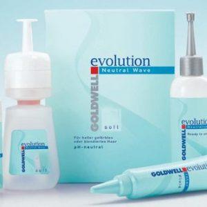 Evolution permanent kit